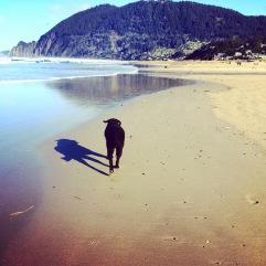 beach w bub